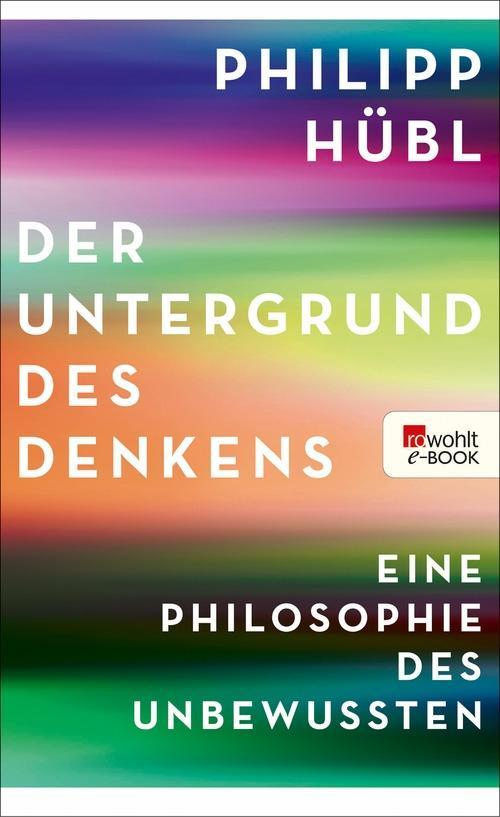 Der Untergrund des Denkens als eBook
