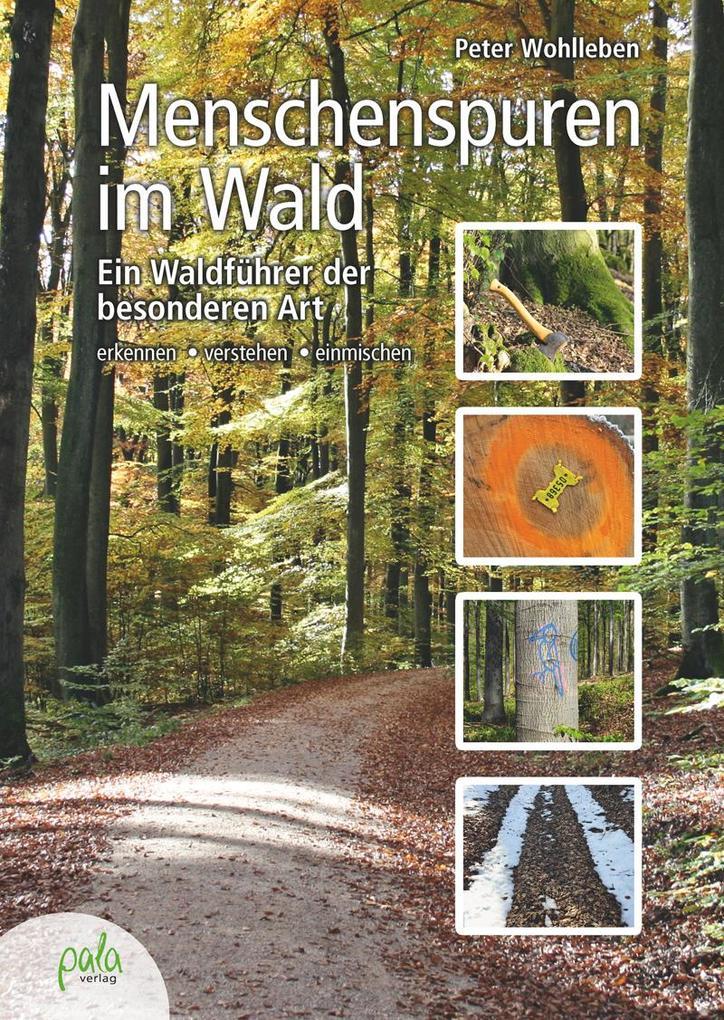 Menschenspuren im Wald als Buch von Peter Wohlleben