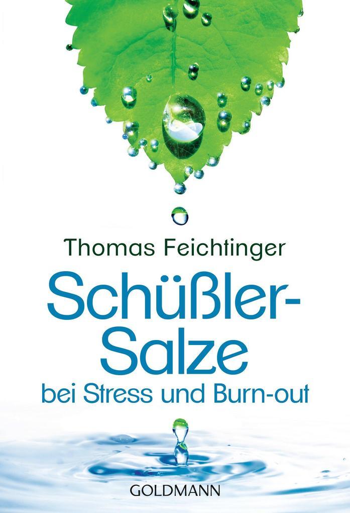Schüßler-Salze bei Stress und Burn-out als eBook
