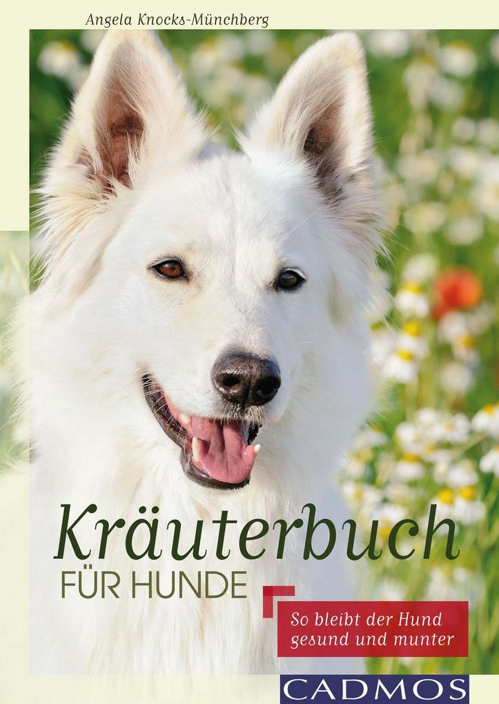 Kräuterbuch für Hunde als eBook