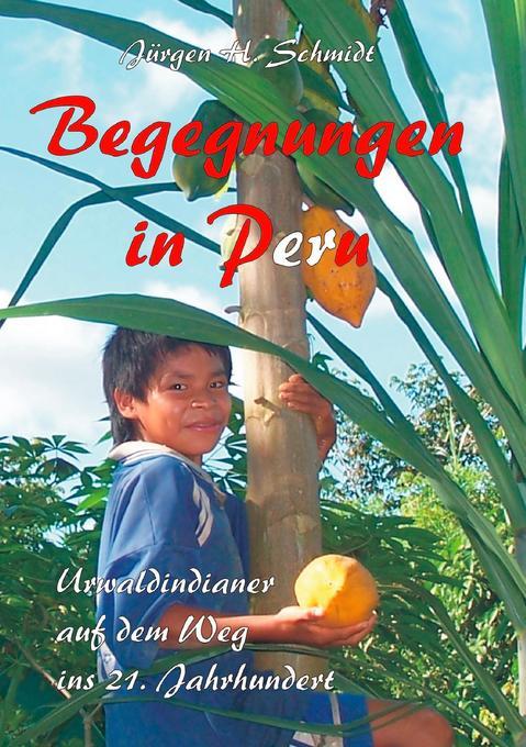 Begegnungen in Peru als Buch