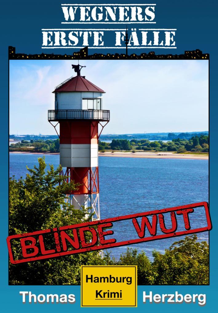 Blinde Wut (Wegners erste Fälle) als eBook