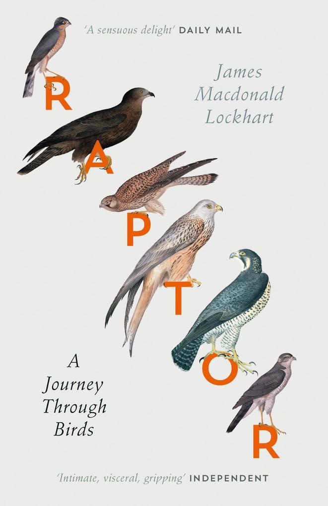 Raptor: A Journey Through Birds als eBook von J...