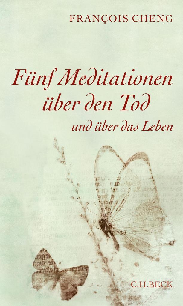 Fünf Meditationen über den Tod als eBook