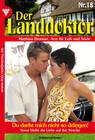 Der Landdoktor 18 - Heimatroman