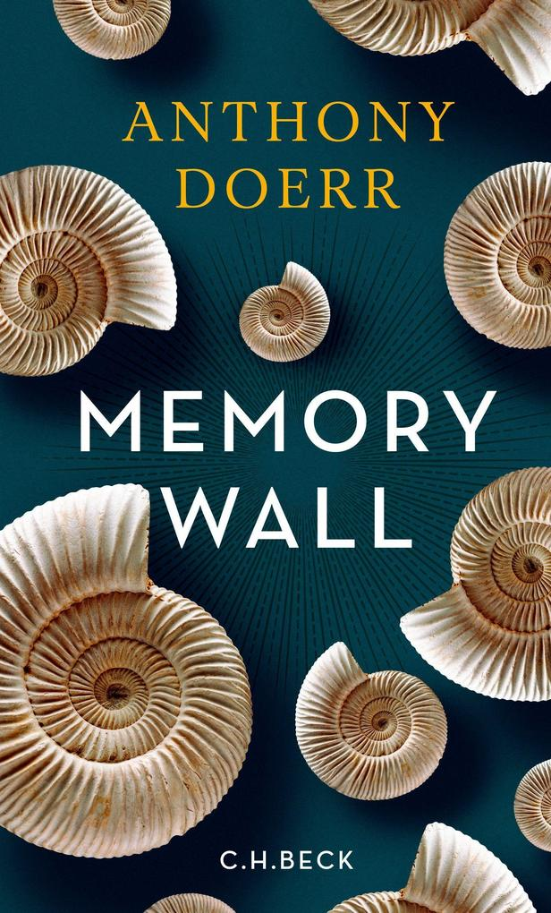 Memory Wall als Buch (gebunden)