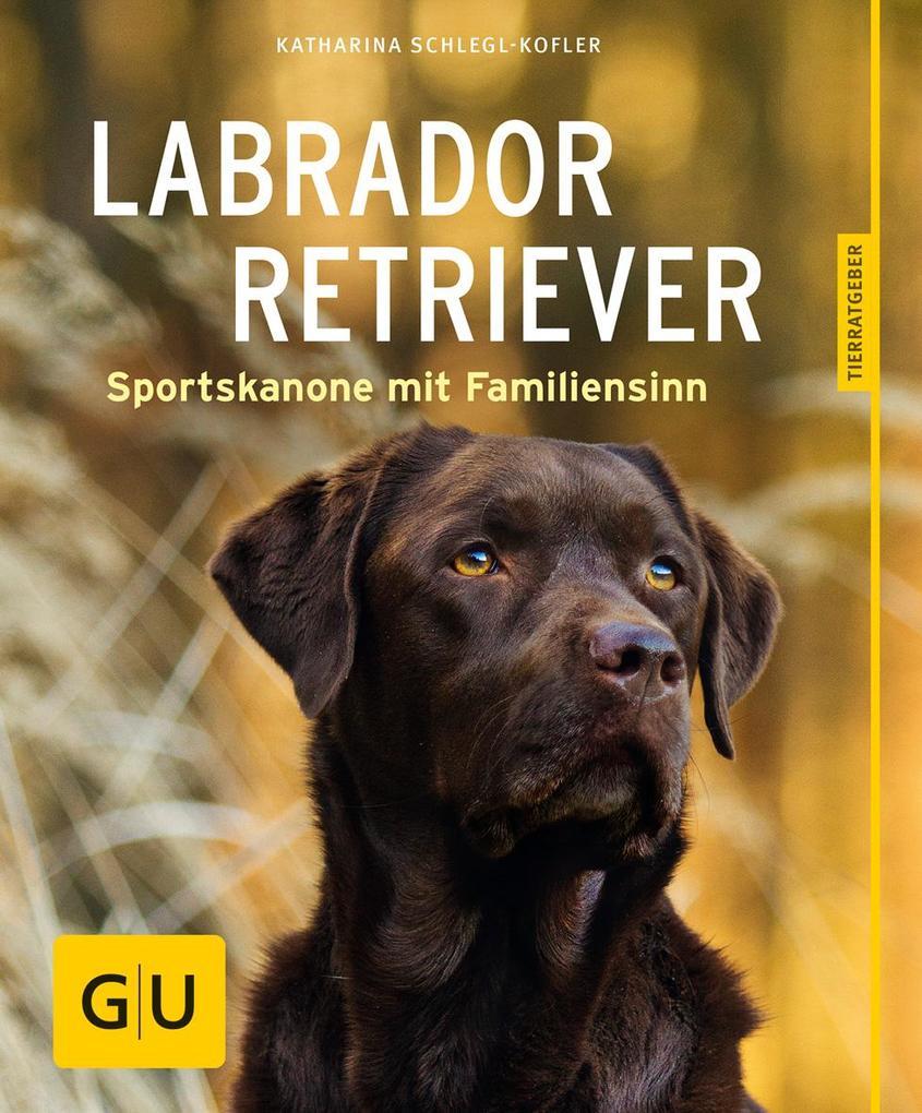 Labrador Retriever als Buch