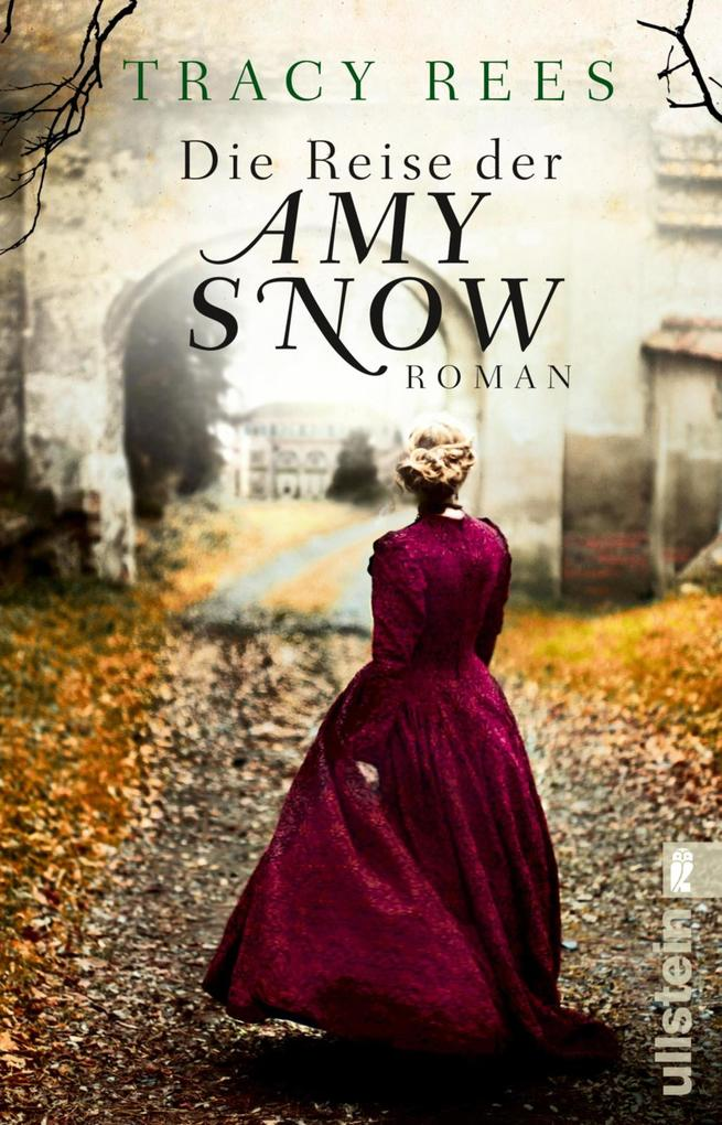 Die Reise der Amy Snow als eBook