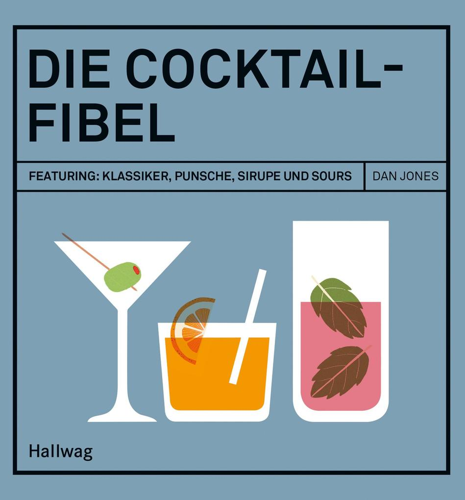 Die Cocktail-Fibel als eBook epub