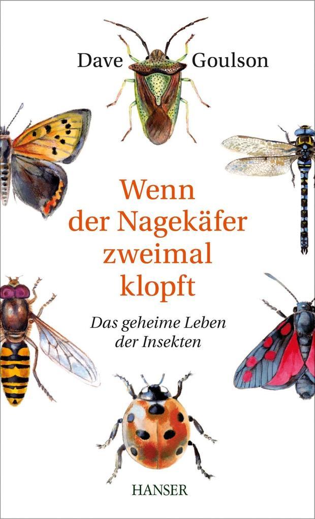 Wenn der Nagekäfer zweimal klopft als Buch