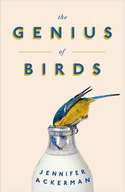 The Genius of Birds als Buch von Jennifer Ackerman