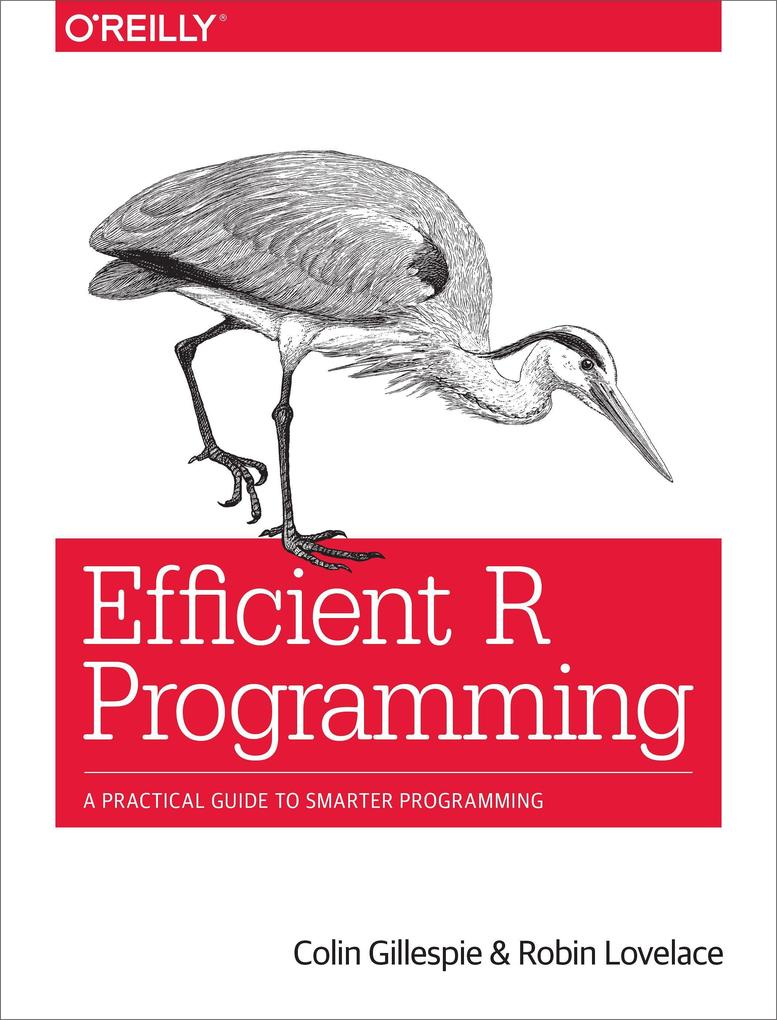 Efficient R Programming als Buch von Colin Gillespie, Robin Lovelace