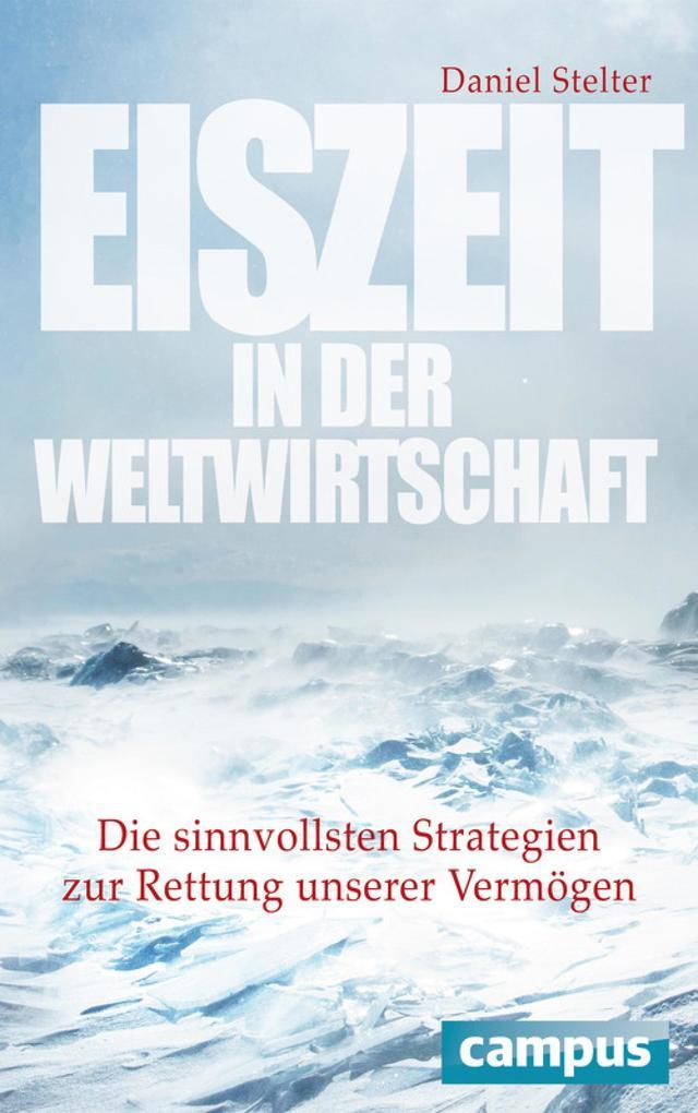 Eiszeit in der Weltwirtschaft als eBook