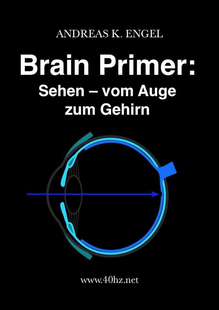Brain Primer: Sehen - vom Auge zum Gehirn als eBook