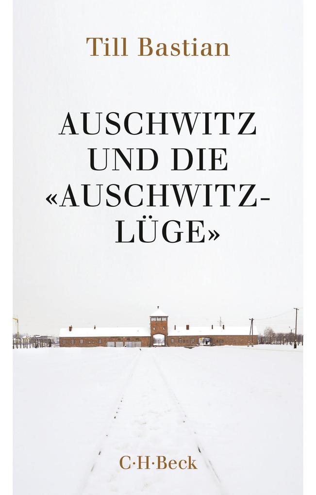 Auschwitz und die 'Auschwitz-Lüge' als eBook