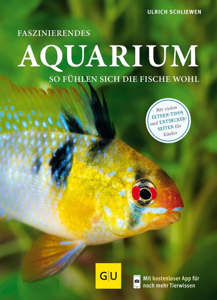 Faszinierendes Aquarium als Buch