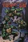 Teenage Mutant Ninja Turtles 10 - Shredder greift an