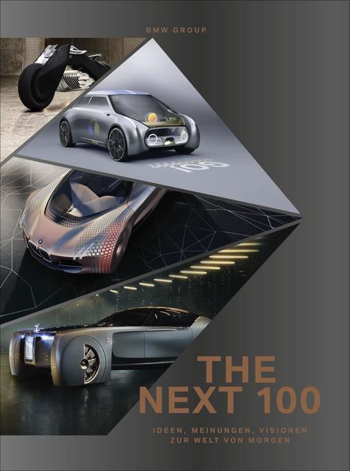THE NEXT 100 als Buch