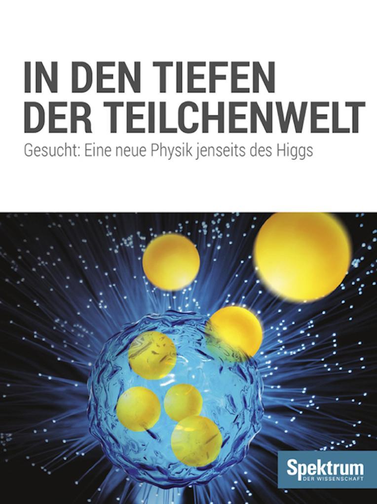 In den Tiefen der Teilchenwelt als eBook