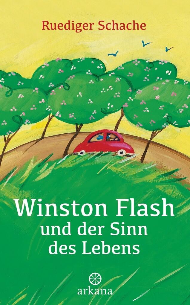 Winston Flash und der Sinn des Lebens als eBook