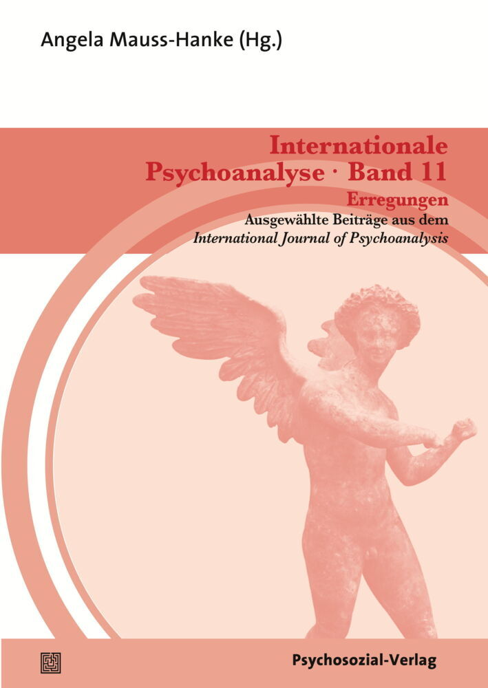 Internationale Psychoanalyse Band 11: Erregungen als Buch