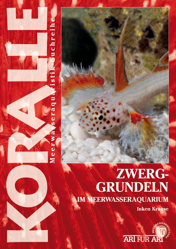 Zwerggrundeln im Meerwasseraquarium als eBook