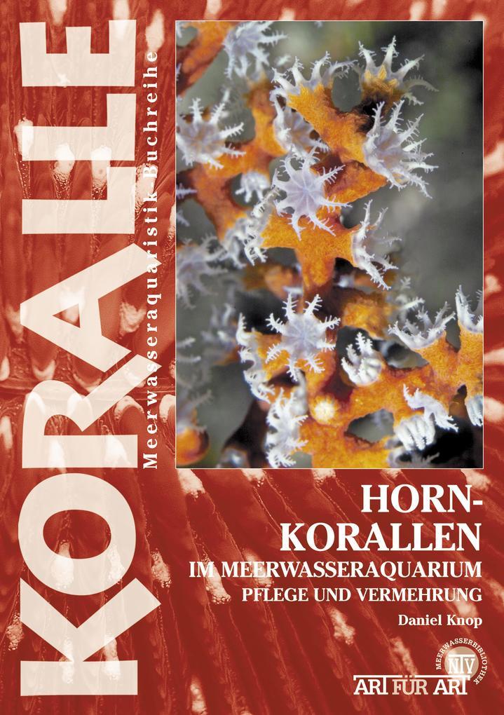 Hornkorallen im Meerwasseraquarium als eBook