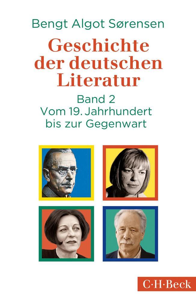 Geschichte der deutschen Literatur Bd. II: Vom 19. Jahrhundert bis zur Gegenwart als Taschenbuch
