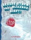 Severe Storm Blizzard Alert