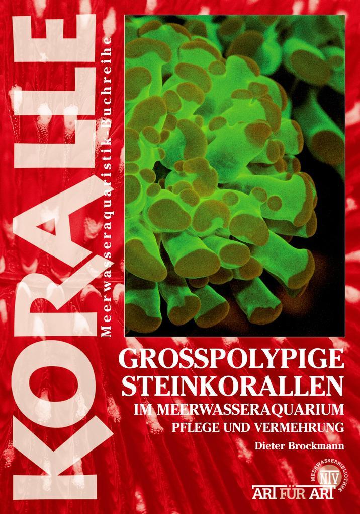 Grosspolypige Steinkorallen im Meerwasseraquarium als eBook