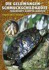 Die Gelbwangenschmuckschildkröte
