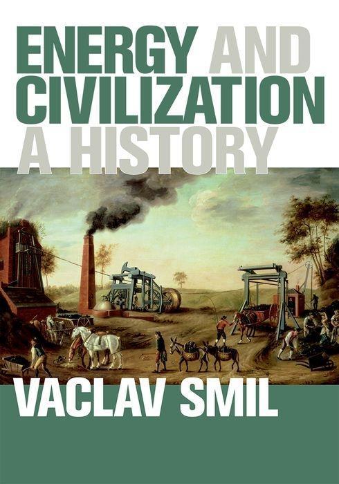 Energy and Civilization als Buch von Vaclav Smil