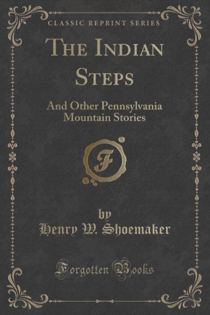 The Indian Steps als Taschenbuch von Henry W. Shoemaker