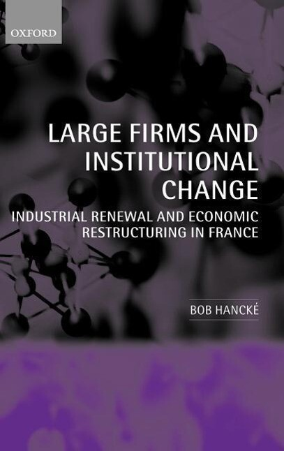 Large Firms and Institutional Change: Industrial Renewal and Economic Restructuring in France als Buch