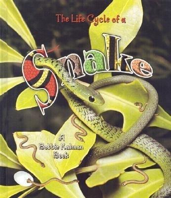 Snake als Buch (gebunden)