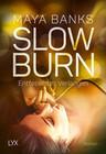 Slow Burn 04 - Entfesseltes Verlangen