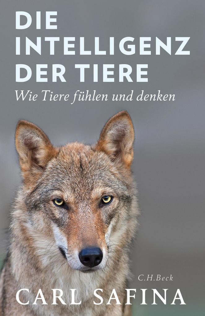 Die Intelligenz der Tiere als Buch