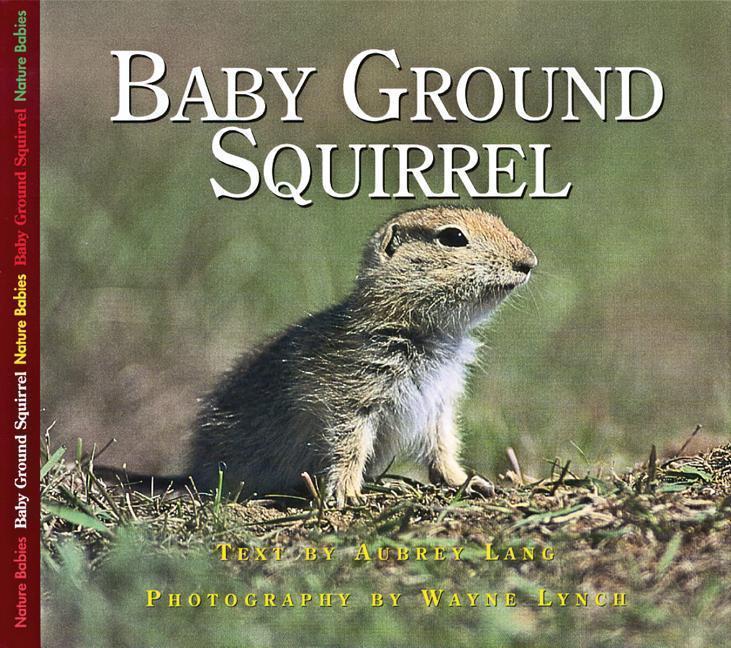 Baby Ground Squirrel als Taschenbuch