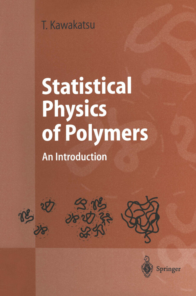 Statistical Physics of Polymers als Buch