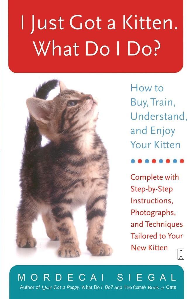 I Just Got a Kitten. What Do I Do? als Taschenbuch