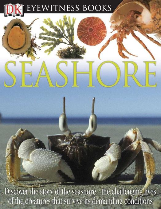 Seashore als Buch