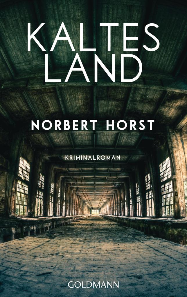 Kaltes Land als eBook