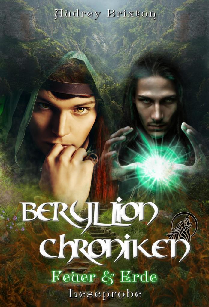 Beryllion Chroniken [Leseprobe] als eBook epub