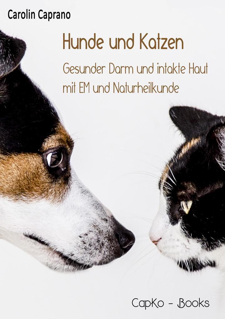 Hunde und Katzen als Buch (kartoniert)