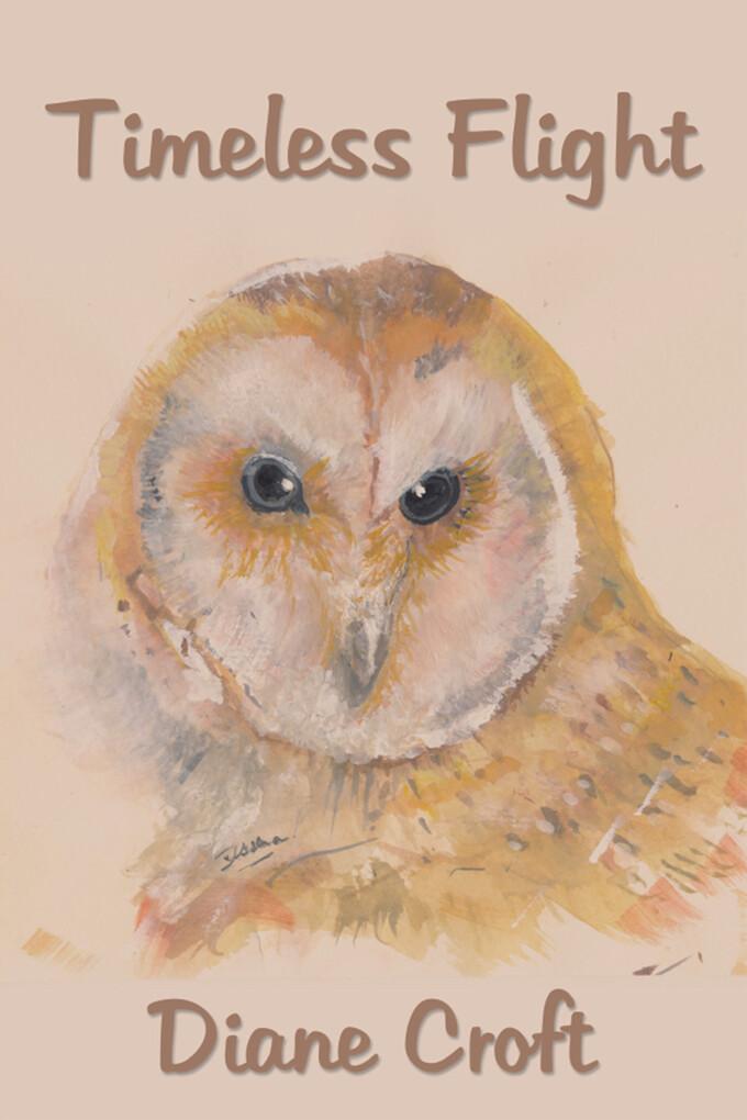 Timeless Flight als eBook von Diane Croft