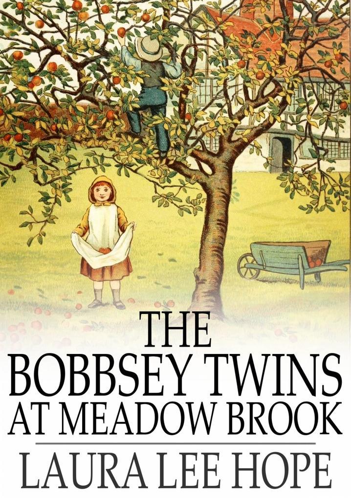 Bobbsey Twins at Meadow Brook als eBook von Laura Lee Hope