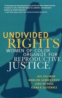 Undivided Rights: Women of Color Organizing for Reproductive Justice als Taschenbuch