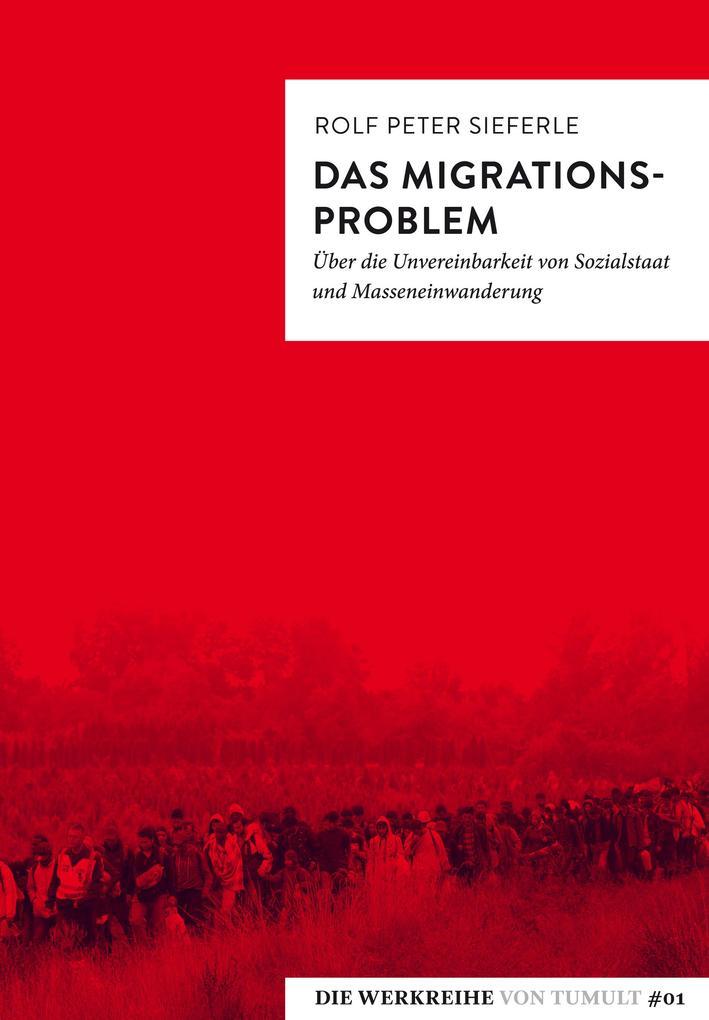Das Migrationsproblem als Taschenbuch von Rolf Peter Sieferle