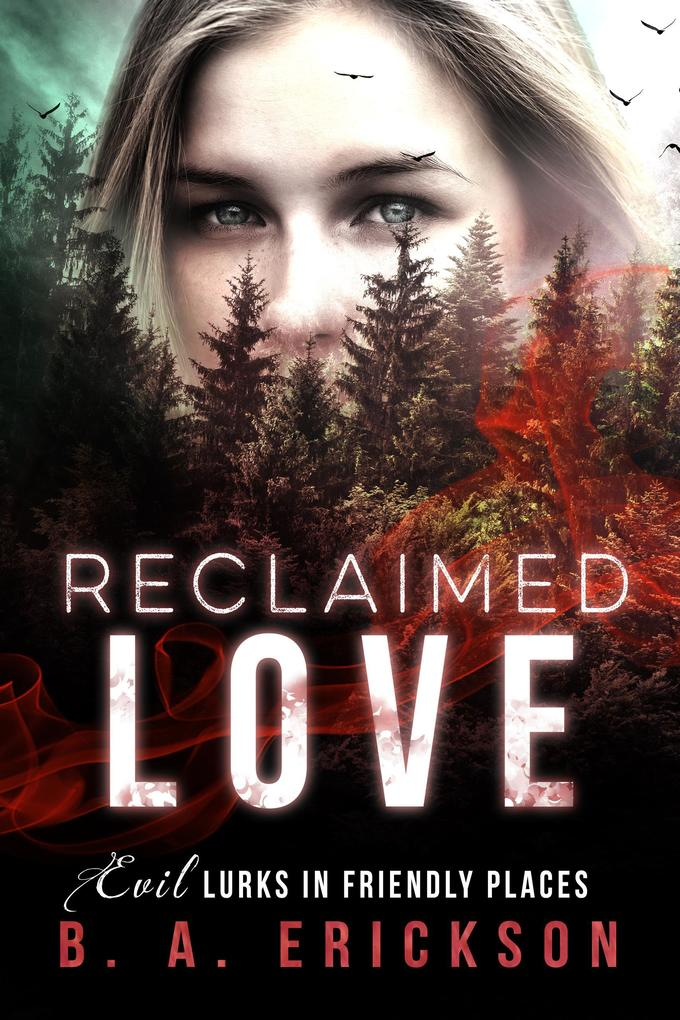 Reclaimed Love: Evil Lurks in Friendly Places (The Reclaimed Series) als eBook von B.A. Erickson