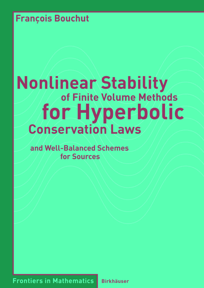 Nonlinear Stability of Finite Volume Methods for Hyperbolic Conservation Laws als Buch
